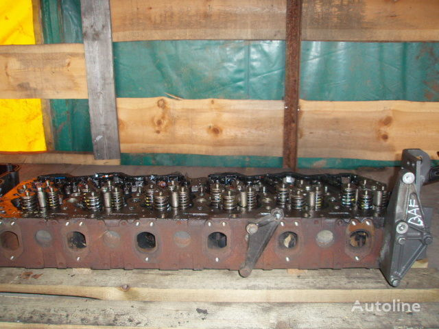 DAF cilinderkop voor DAF XF 105 trekker
