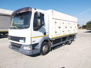DAF 45.220 SURGELATI ATP 10/2024 - 120QLI koelwagen vrachtwagen