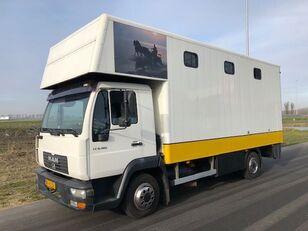 MAN LE8-180 paardenvrachtwagen