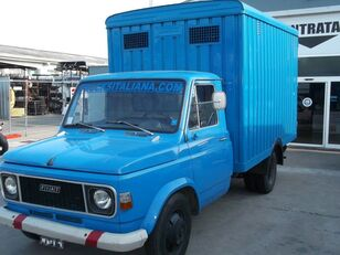 FIAT 616 N3/4 TRASPORTO BESTIAME ANIMALI VIVI veewagen vrachtwagen