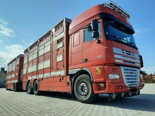 DAF XF 105.510 6x4 Élőállat-szállító veewagen vrachtwagen + vee aanhanger